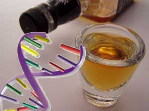 genes-and-alcohol-glendale-dui.jpg