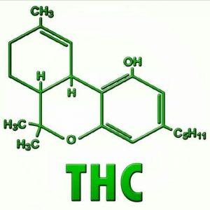 THC-test-DUI-los-angeles